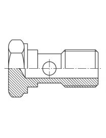 Tornillo orientable BSP inox