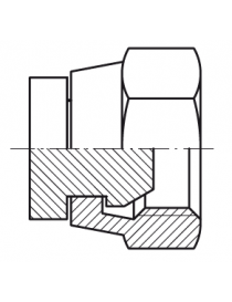 Tapón hembra giratoria BSP