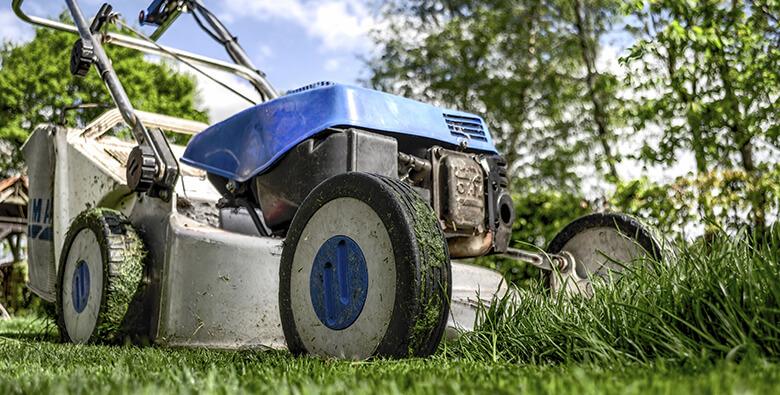 herramientas-imprescindibles-de-jardineria