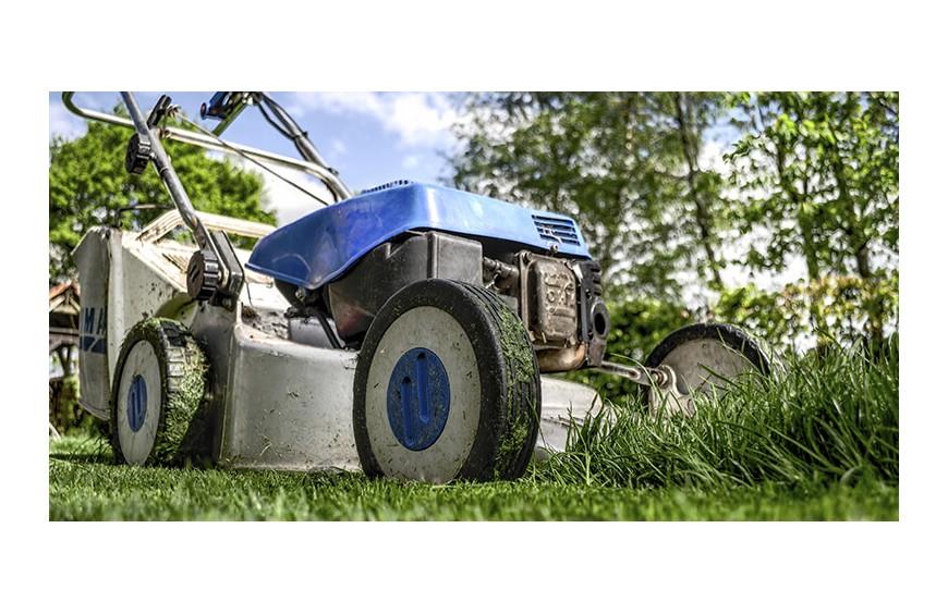 5 herramientas para la jardinería que no puedes perderte